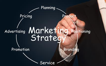Develop and Refine Your Marketing Strategy